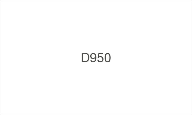 D950 1000 large