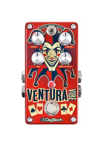 Ventura vibe large