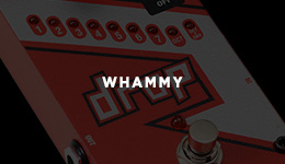 Whammy/Pitch